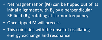nuclear magnetization, NMR, precession
